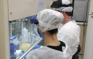 SP registra 38,7 mil óbitos e 1,09 milhão casos de coronavírus