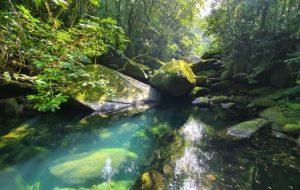 Quatro núcleos do Parque Estadual Serra do Mar retomam visitações