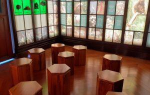 Museu do Instituto de Botânica é reformado