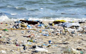 SP lança primeiro plano estratégico de monitoramento e avaliação do lixo no mar do país
