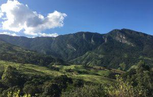 Nova unidade de conservação no Vale do Paraíba vai preservar 400 espécies de animais