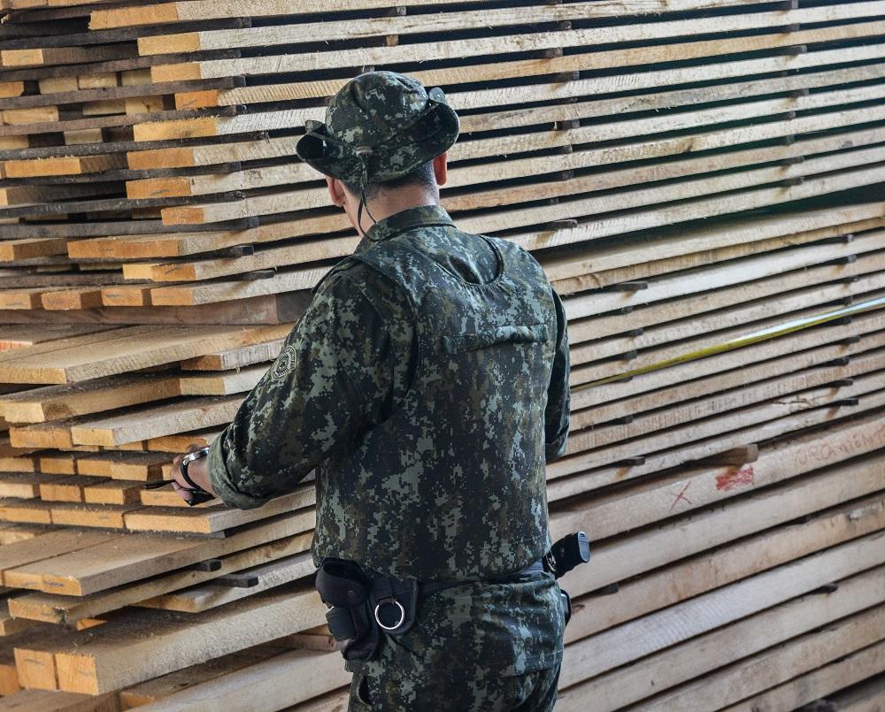 Apreensão de madeira ilegal pela PM Ambiental aumenta quase 300%no primeiro trimestre