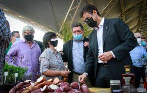 Governo de SP anuncia investimento recorde em pesquisa agropecuária