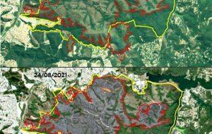 Imagens de satélite mostram que fogo atingiu 53% do Parque do Juquery